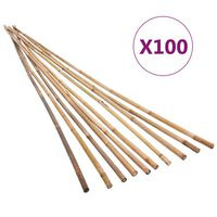 vidaXL Градински бамбукови колчета, 100 бр, 170 см
