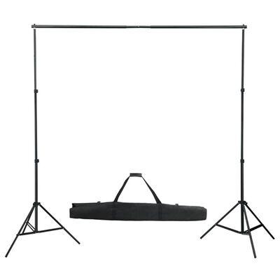 vidaXL Фотографски комплект за студио с осветление и фон