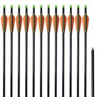 """Стандартни стрели за съставен лък 30"""" 0,8 см, 12 бр, фибростъкло"""