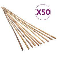 vidaXL Градински бамбукови колчета, 50 бр, 120 см
